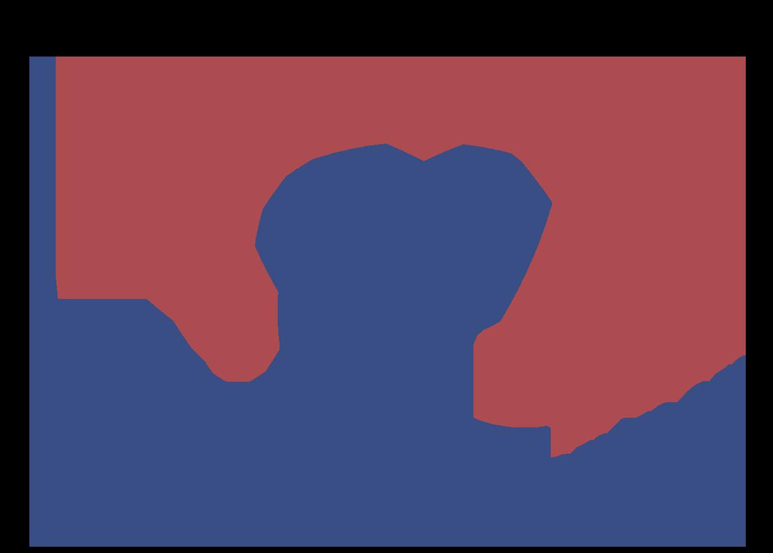 Knollenborg & partner